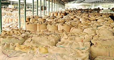 हरिद्वार से किसानों के लिए राहत की खबर है। यहां पर ज्यादातर खरीद केंद्रों पर धान की खरीद शुरू हो गई है। ऐसे में किसानों ने राहत की सांस ली।