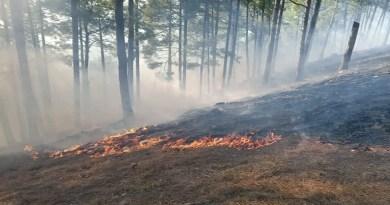 उत्तरकाशी के जंगलों में लगी आग से मुश्किलें बढ़ती जा रही हैं। उत्तरकाशी वन प्रभाग से लेकर यमुना वन प्रभाग तक जंगल जल रहे हैं।