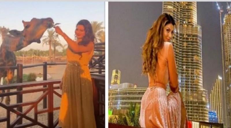 रौतेला इन दिनों दुबई में है और वहां परिवार के साथ छुट्टियों का मजा ले रही हैं। अपने वेकेशन की कई वीडियो पर उन्होंने अपने सोशल मीडिया अकाउंट पर शेयर की है।