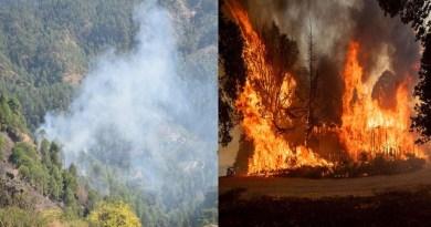 अल्मोड़ा में जंगल में लगी भीषण आग, काबू पाने में वन विभाग की टीम के छूटे पसीने