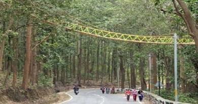 उत्तराखंड में सांपों-अजगर के लिए बना अनोखा पुल! 2 लाख रुपये की आई लागत और बनने में लगे 10 दिन