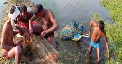 रुड़की: दहशत फैलाने वाले मगरमच्छ पर वन विभाग ने पाया काबू, घंटों की मशक्कत के बाद बाद मिली सफलता
