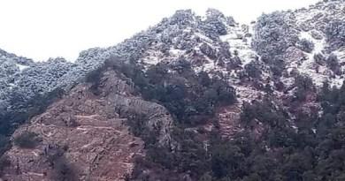 ठंड की शुरुआत होने के साथ ही उत्तराखंड के पहाड़ी इलाकों में बर्फबरी का दौर भी शुरू हो गया है। अलग-अलग इलाकों में बर्फबारी हो रही है।