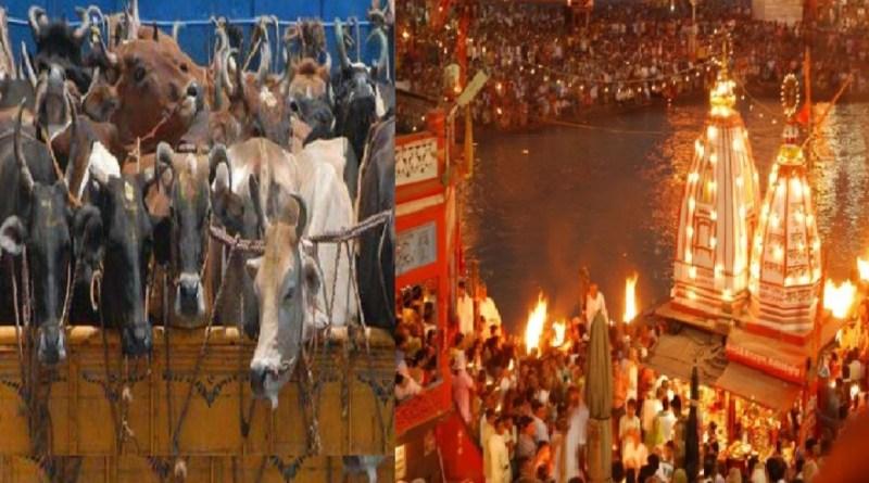 हरिद्वार: महाकुंभ से पहले धर्मनगरी में पूरी तरह से बंद होंगे स्लाटर हाउस!