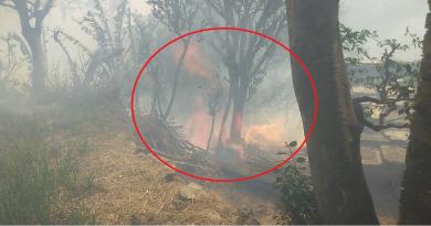 पौड़ी गढ़वाल के लैंसडाउन विधानसभा क्षेत्र के पुंडेर गांव तल्ला में आग का तांडव देखने को मिल है।