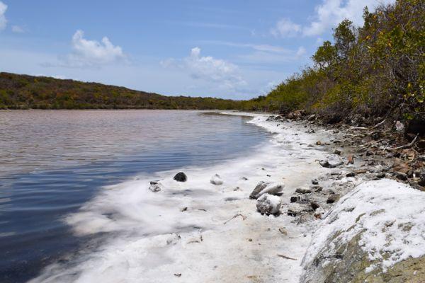 Salt Pond at Salt Pond Bay, St John USVI
