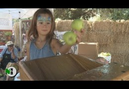 Sights & Sounds of the Gravenstein Apple Fair