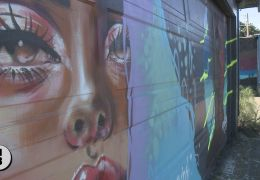 Mural artists in Santa Rosa create new works in wake of vandalism