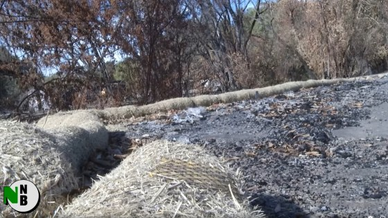 As Toxic Sweep Continues, Glass Fire Victims Get Winter Prep Assistance