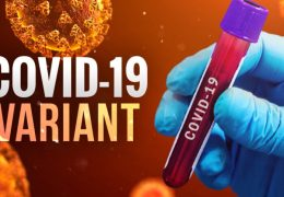 COVID-19 Mutation Known as UK Variant Found in Sonoma County