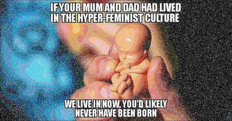 hyper feminist culture meme