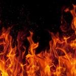 【炎上】元大手ニコ生主・闇将軍がすき家で不衛生行為の配信に非難殺到!