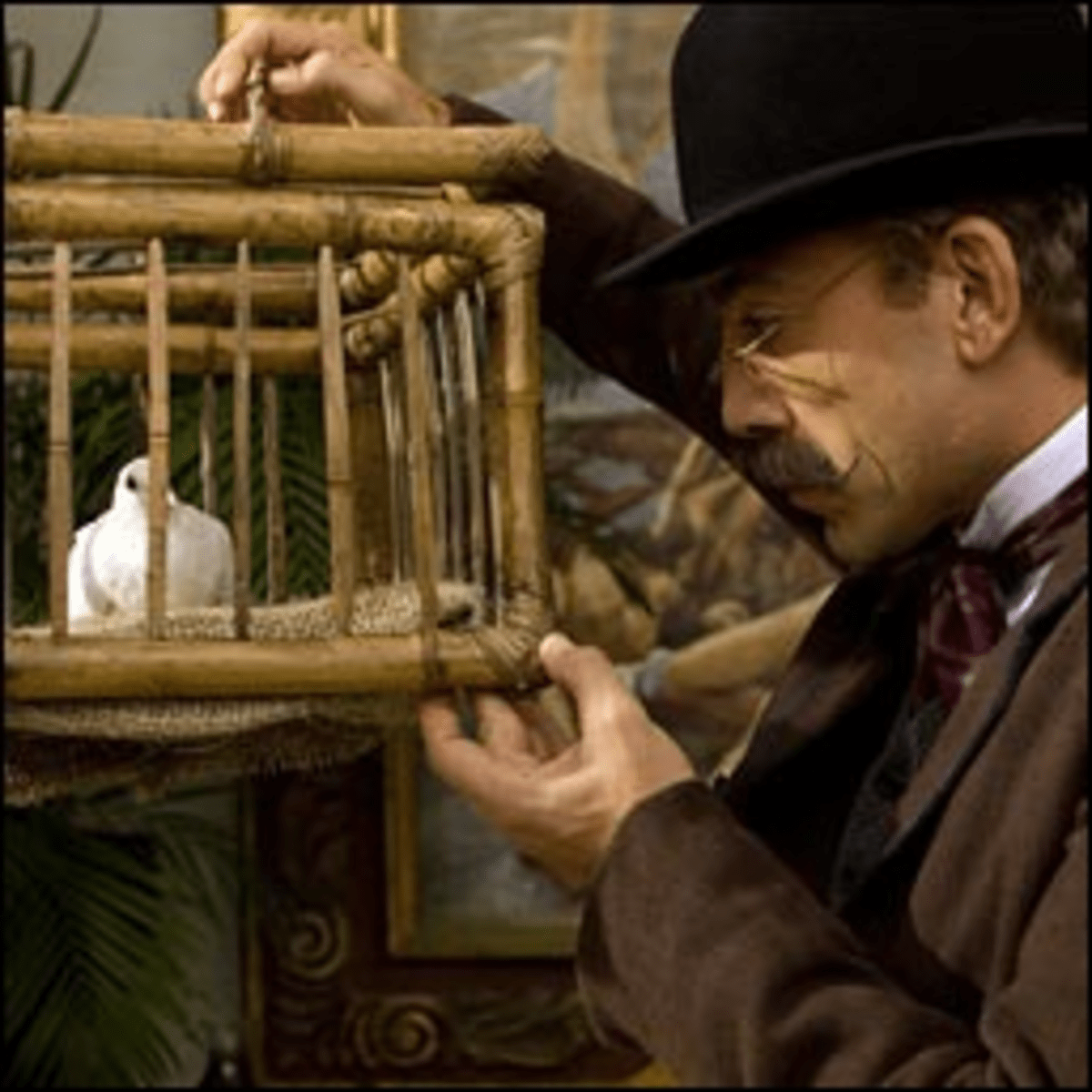 The Cage of Innocence: Cholera?s Bardem ponders a metaphor for his romantic yearnings.