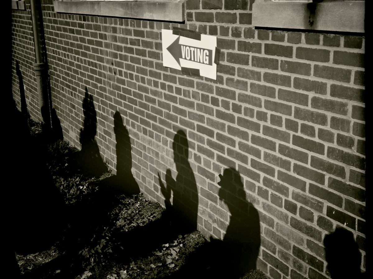 Shadows of people standing in line to vote.