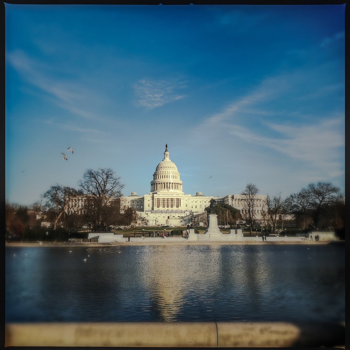 the Capitol seen from across the reflecting pool