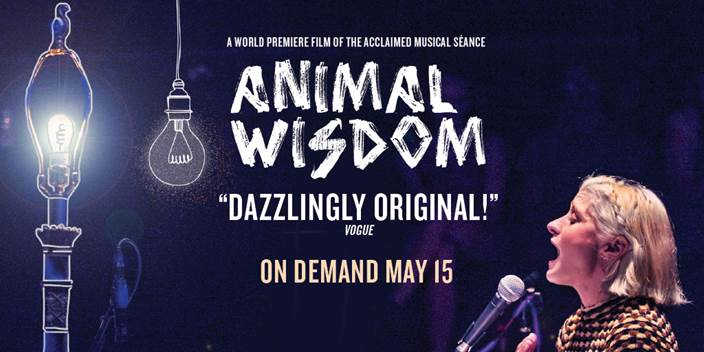 A promotional image for Animal Wisdom.