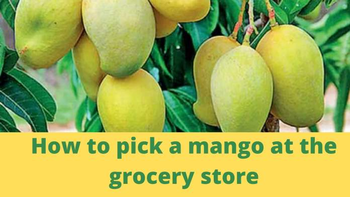 How to pick a mango at the grocery store