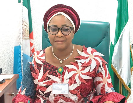 Diaspora Voting Bill: House of Representatives To Commence Second Reading