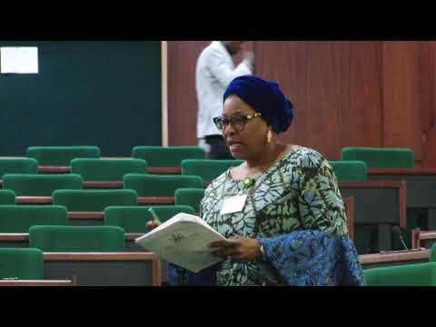 Hon. Sodipe Call For Better Engagement Of Nigerians In Diaspora