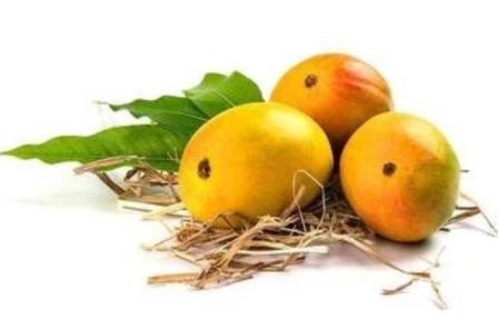 कोरोनाकाळात भारतातून ५८ हजार ७६ कोटींची शेतमालाची निर्यात झाली. त्यामध्ये द्राक्ष आणि आंबा निर्यातीत राज्य देशात पहिल्या क्रमांकावर आहे.