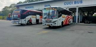 bus-arah-jatim
