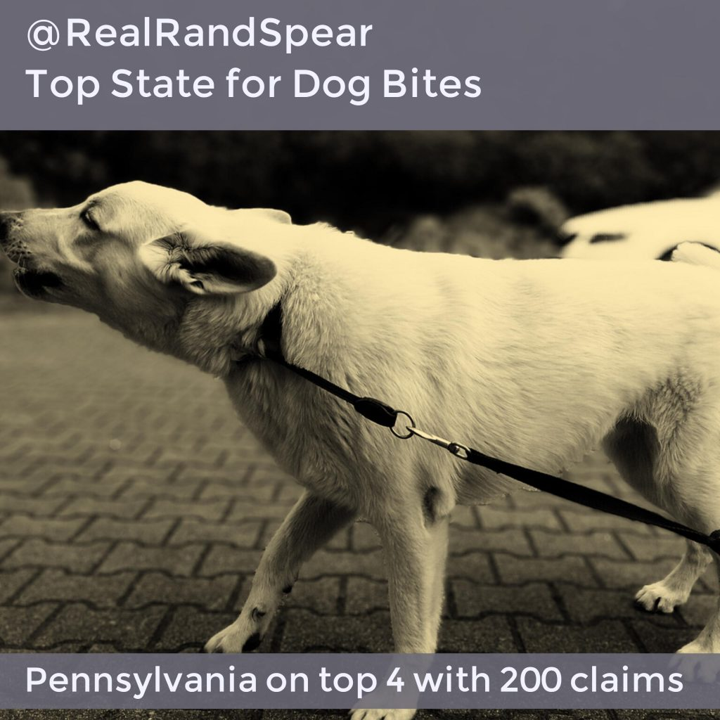 Philadelphia Dog Bite Injury Lawyer Discusses Pa As A Top
