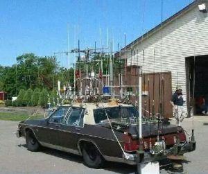 Bonito mit Antennen unterwegs