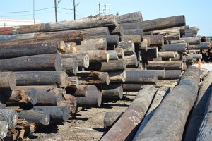 (Image) In 2014, CPS Energy recycled 7,000 poles.