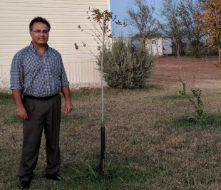 (Image) Humberto Aguilar stands next to the tree he planted, for which he received a $50 rebate.