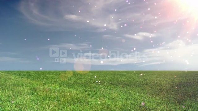 floating-particles-open-field_zktfoz5xb__PM13-07-27