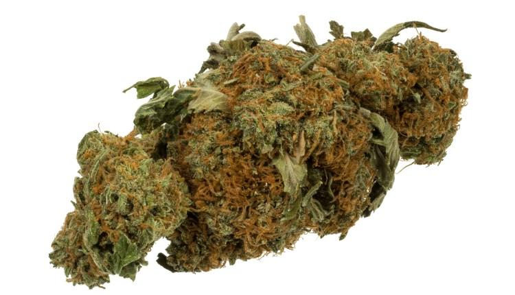 Marijuana Cannabis Weed Bud Gram 1
