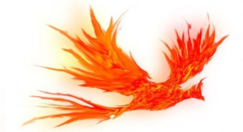 Innovation statement:confidence, not phoenix levels, will rise from bankruptcy changes.