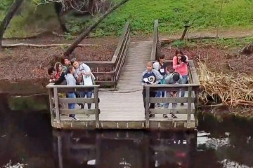students stand on wooden structure over lake