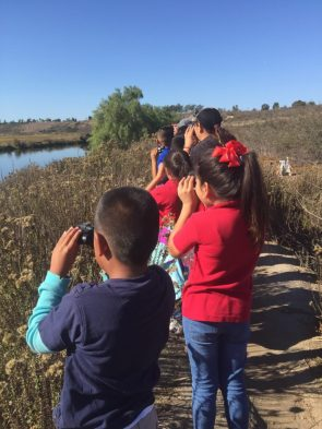 Students visiting wetlands