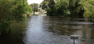 MANAGING TROPICAL STORM RISK IN FLORIDA