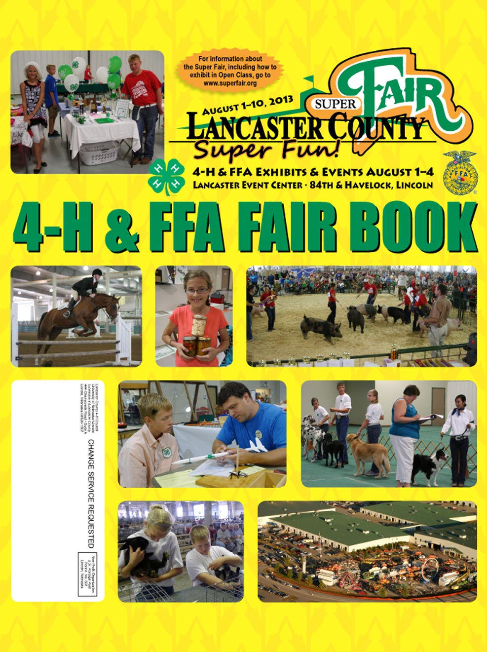 Books Fair Paws Book