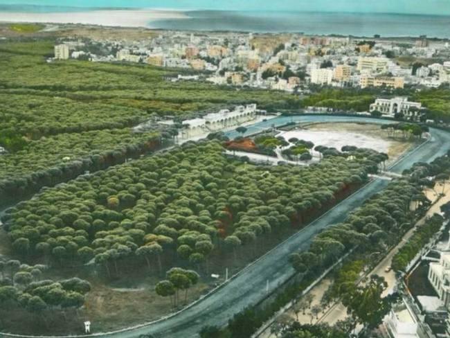 Horsh Beirut In 60s, size: 1,250,000 m2 Current size: 333'000 m2 Source: Photo Facebook/StopCulturalTerrorismInLebanon via Gabrial Daher