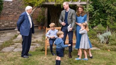 Photo of Кембриджи встретились с сэром Дэвидом Аттенборо в Кенсингтонском дворце
