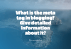 what_is_the_meta_tag_in_blogging__give_detailed_information_about_it_