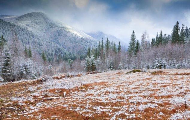 Карпати. Фото: А. Майоовський
