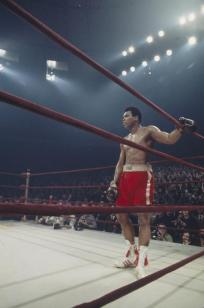 UNDATED: Muhammad Ali stands in the corner of the ring during a match. (Photo by Focus on Sport/Getty Images) *** Local Caption *** Muhammad Ali