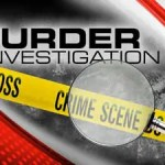 Agricola man shot dead execution style while in mini bus