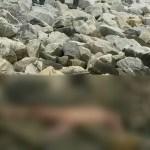 Woman's nude body found at Turkeyen seawalls