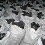 Cocaine busted in 40 ft container of charcoal at SilverHill