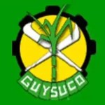 Guysuco unable to account for $154 M of workers Credit Union contributions