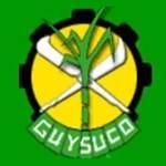 Guysuco blames El Nino for 29% sugar production shortfall for first crop