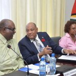 Politics should not stand in the way of development of extractive industry  -Trotman