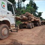 GFC moves to repossess Baishanlin's forestry concessions as company fails to settle debts.
