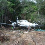 No evidence of anyone being beaten or tortured during illegal airplane probe  -GDF