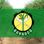 Guysuco's survival could cost the treasury over $40 Billion in the next two years   -Agri. Minister